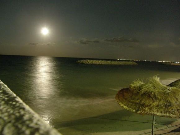 Покажите Лунный Свет? Красивый.