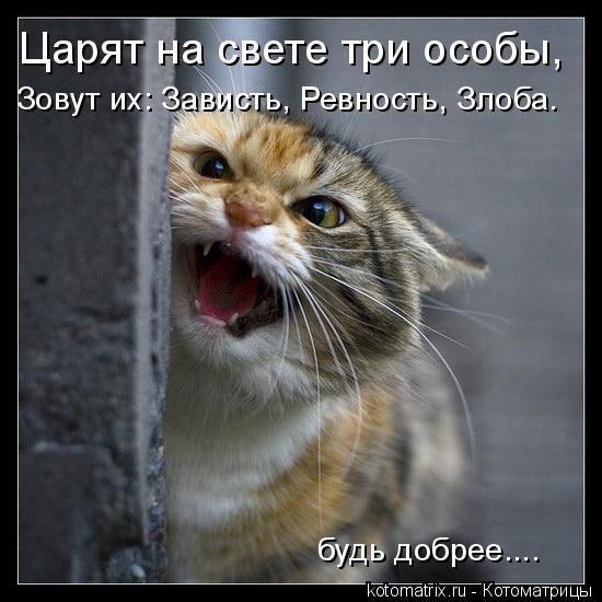 """Покажите """"зависть"""" ? :)"""