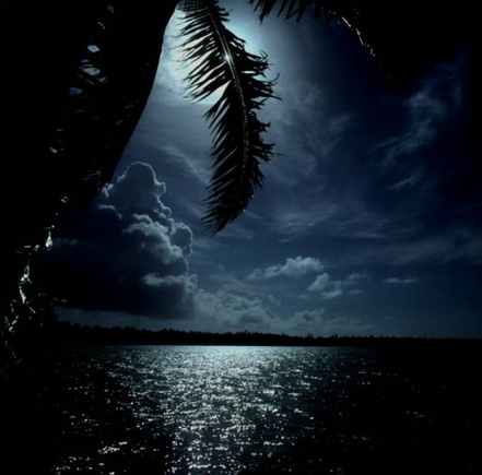 красивая картинка ночь