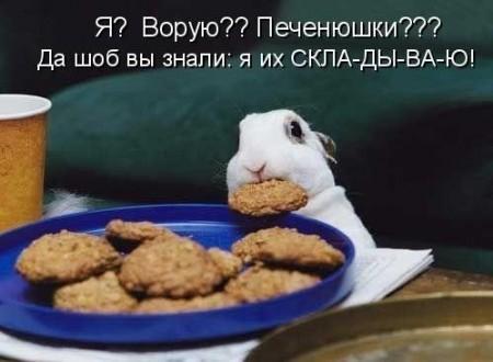 покажите прикол с зайцами?