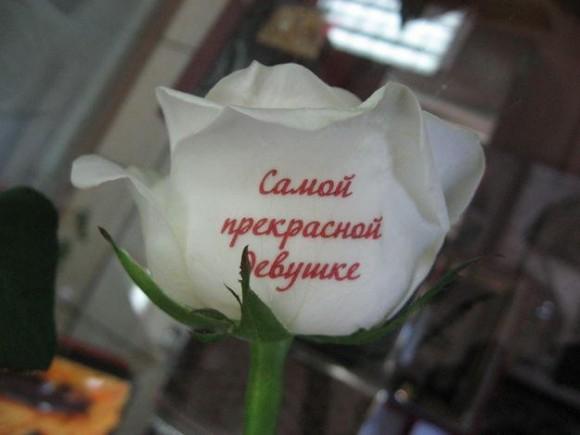 Фото подарок для самой красивой