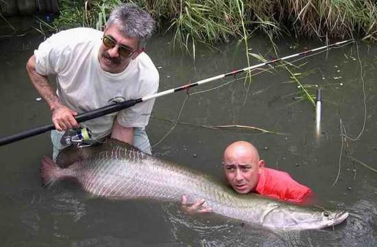 хорошо ли быть рыбаком