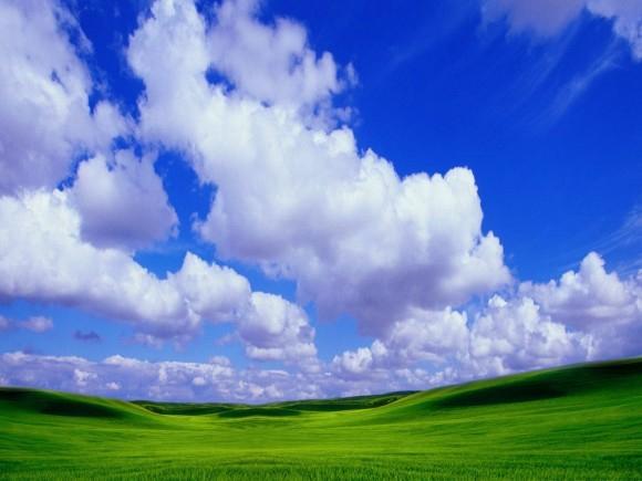 По вашему какой он-красивый летний денёк?