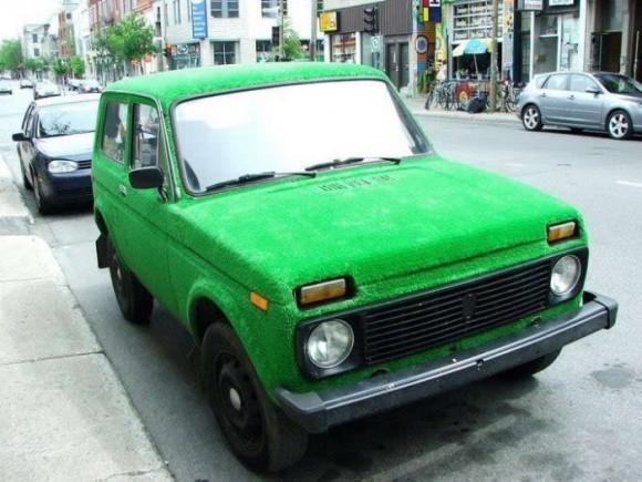 Покажите что-нибудь зеленое?