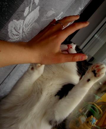 Покажете свою руку?)