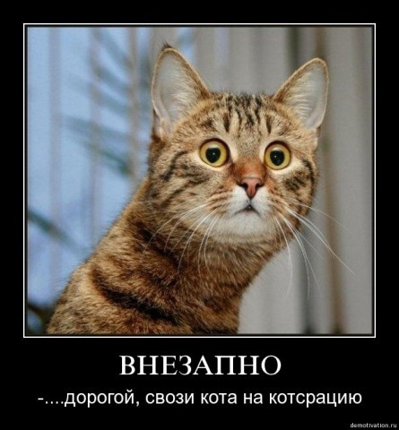 Дефицит госбюджета Украины составил 53,776 миллиарда гривен, - Минфин - Цензор.НЕТ 4885