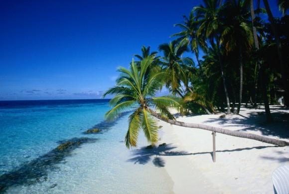 Где бы вы хотели провести выходные?
